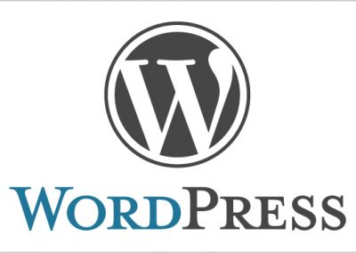 There are many great reasons your website should be built on WordPress – let's talk about them.